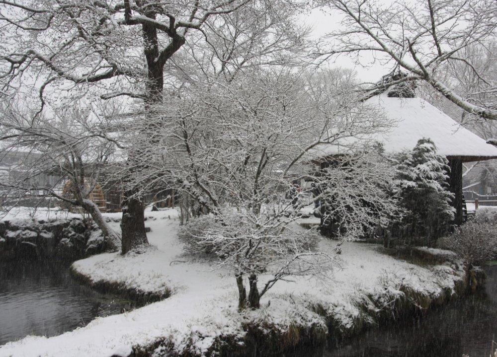 Il a commencé à neiger pendant notre visite à Oshino Hakkai