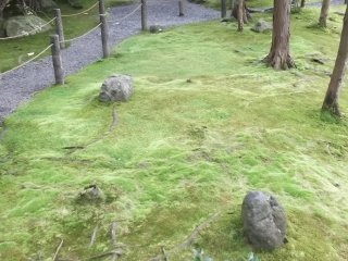 The Garden of Shinyo is vibrantly green