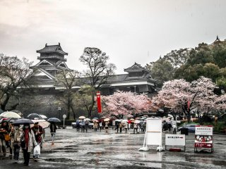 A rain-soaked landscape