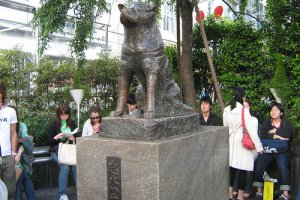 The infamous Hachiko statue