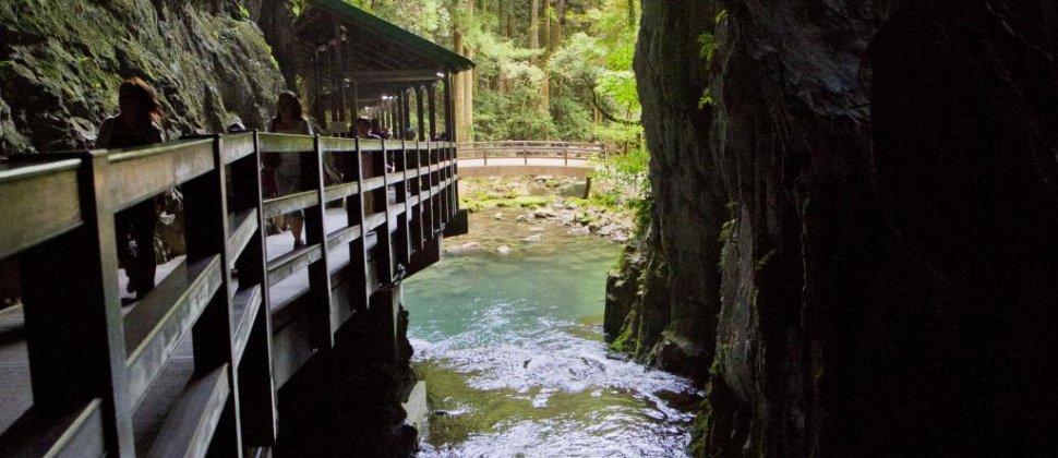 Akiyoshi Cave