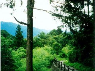 เดินไปบนเส้นทางที่ห่างไกลผู้คนไปสู่หมู่บ้านซึตมะโกะและหมูบ้านมะโกะเมะ