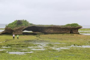 Toguchi Park and Beach is a clammer's paradise during low tide when the moon is full