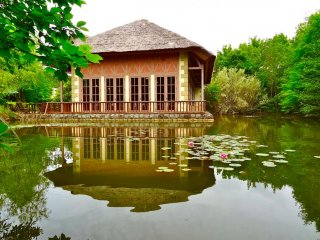 Surrounded by the pond, enjoy French cuisine during the lunch hours of 11:00am to 2:00pm