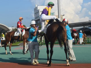 You can check the horses for form - or simply see what color jockey's silks catch your eye!