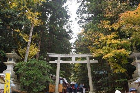 Autumn at Yahiko Shrine