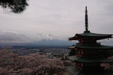 Road Trippin' Japan (Part Three)