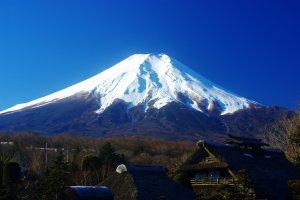 Stuck at Home? 11 Virtual Tours for Enjoying Japan