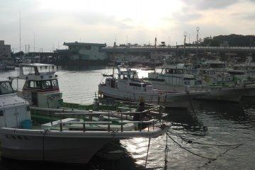 Bến cảng Oiso