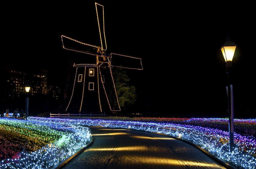 Flower Road is a road of flowers and windmills.