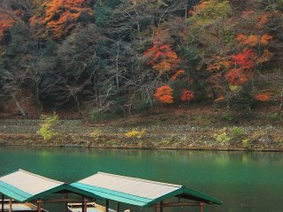 Boat park in Hozugawa river with emerald colors and autumn foliage
