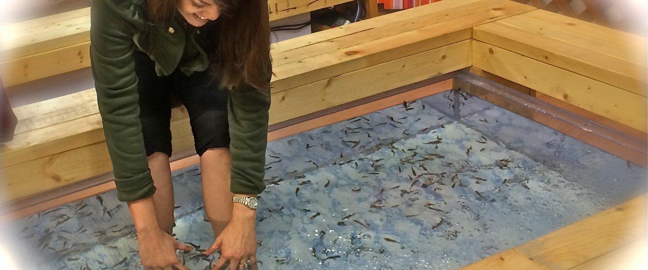 Dr. Kiss Fish foot bath at Yokohama Chinatown. Photo taken in 2014.