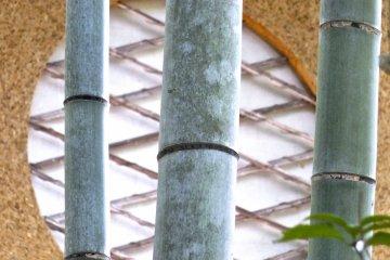 ชิเซนโดะ :คฤหาสน์ สวน และวัด