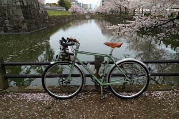 Tokyo Self-guided Cherry Blossoms Cycling Tour