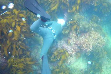 Diving with Ama diver in Ise-shima