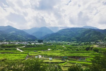 Yamanashi Nature, Local Culture and Food Tour