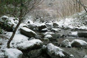 Tuyết phủ kín con đường mòn
