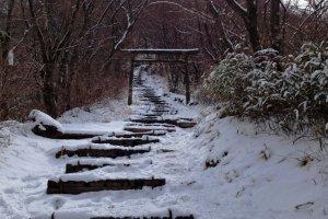 Cổng Torii (鳥居)