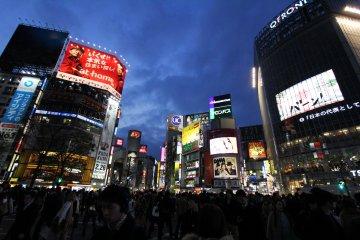 <p>เดินข้าม 5 แยกชิบุย่า คือกิจกรรมสำคัญในโตเกียวที่นักท่องเที่ยวทุกคนไม่ควรพลาด เพราะถนนสายนี้คือโตเกียวสมัยใหม่ขนาดย่อม</p>
