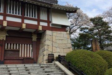伏見桃山城賞櫻之旅