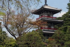 Rinnoji temple in the temple and shrine district.