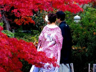 Wedding couple at Maruyama Koen Park in autumn