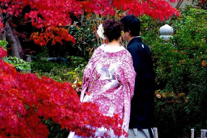 Парк Маруяма в Киото