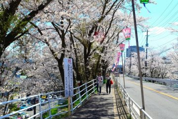 <p>On the way to Narita Temple</p>