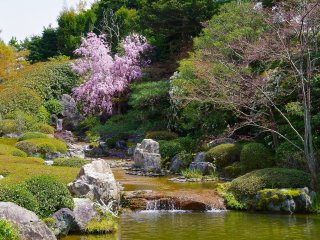 Yoko-en, a colorful garden with many kinds of seasonal flowers