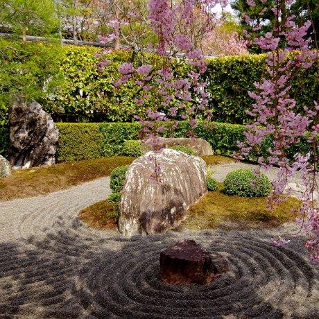 Kyoto Taizo-in Temple