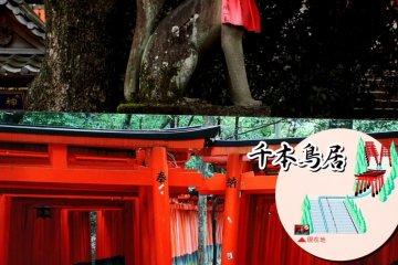 มนต์เสน่ห์ธรรมชาติที่ฟูชิมิอินาริ