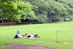 นักท่องเที่ยวที่นอนพักอย่างสบายอารมณ์บนพื้นหญ้า