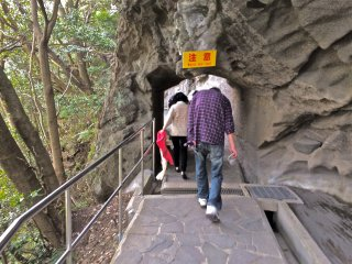 2,000 steps, natural pathways and low hanging cliffs over-head make for an interesting hike throughout Mt Nokogiriyama.