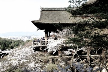 <p>The iconic Kiyomizudera from the side</p>