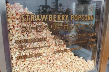 <p>Strawberry flavored popcorn is always our favorite at the park, but there are other interesting flavors available throughout: Curry, Milk Tea, Black Pepper, and Caramel.</p>