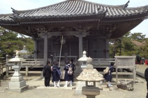 Schoolchildren ring the bell