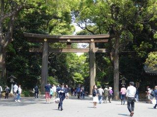 ประตูโทริของ เมจิ จินกุ ประตูแรกตรงทางเข้าศาลเจ้า ที่ผู้เข้าชมทุกคนจะต้องเดินเท้าเข้าไป