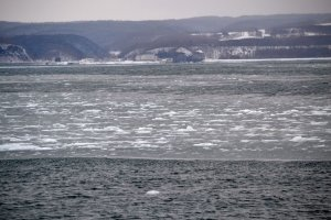 Sheets of ice in the ocean