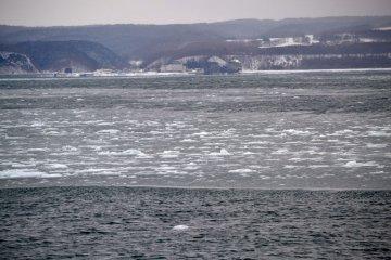 海上一片片的冰