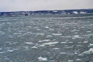 Ice Ice everywhere