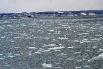 冰、冰、到處都是冰