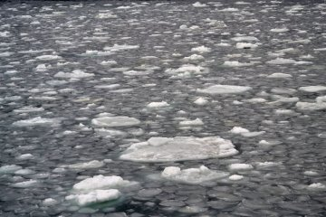 Дрейфующие снежные пластины