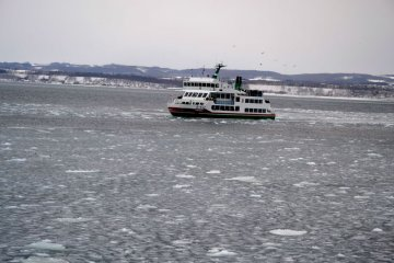 Abashiri Drift Ice Sightseeing