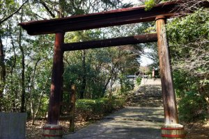 The wooden torii