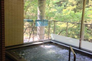 <p>อ่างแบบ Indoor ที่มองเห็นธรรมชาติภายนอก</p>