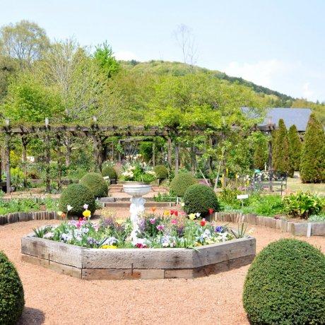 이바라키현의 플라워 언덕의 꽃밭