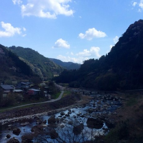 Khu suối nước nóng Tsuetate ở Kyushu