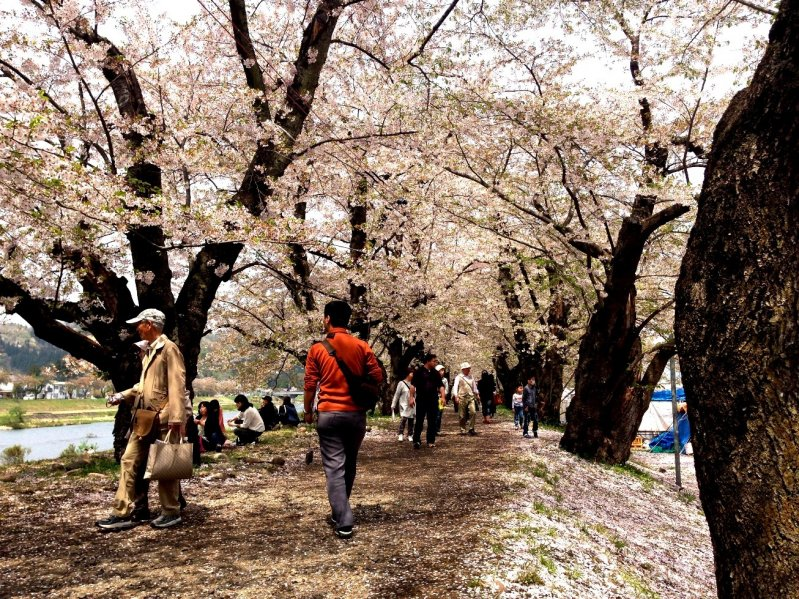 <p>Even in Golden Week you can enjoy strolling here without the crowds that you will find in Kyoto.</p>