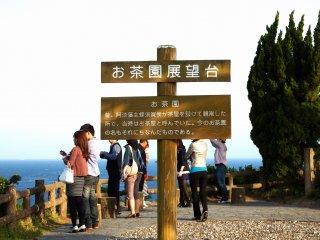 Tempat observasi bernama 'Tea Garden'