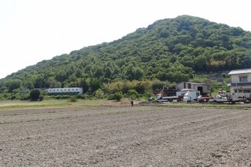 <p>When I was there (end of May), the rice paddies were empty. The farmers were just finishing plowing the soil. In the summer months the rice paddies will be filled with green rice plants that will add beauty and color to the surrounding.</p>